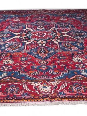 Bakhtiary persiano cm 352×270