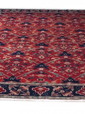Rubia turco cm 369×268