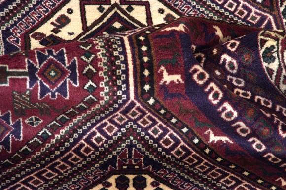 Share Babak persiano cm 183x135