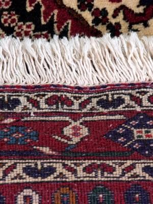 Share Babak persiano cm 217×158