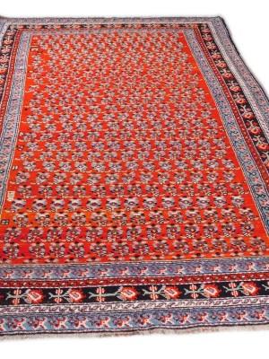 Karabagh caucasico antico cm 290×153